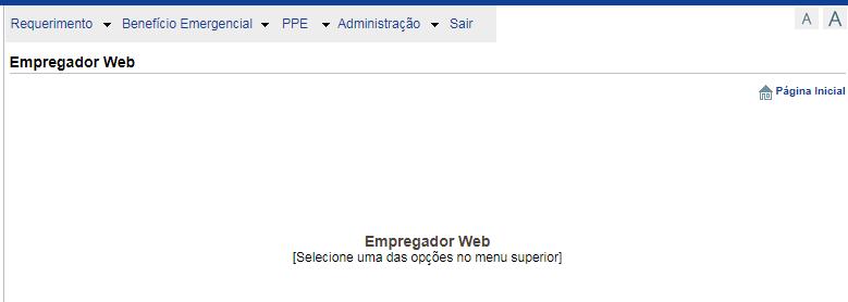 Veja como preencher o Empregador Web