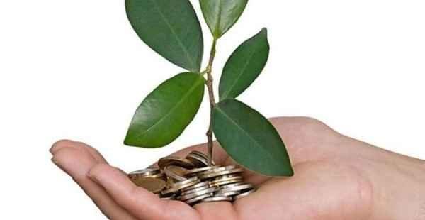 Cupom Ecológico, a opção sustentável que acaba com a burocracia do papel