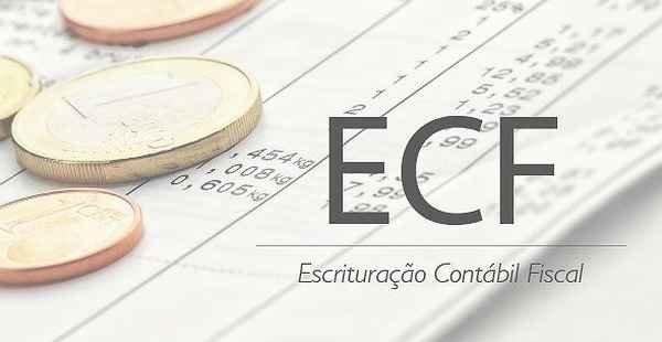 Resultado de imagem para ECF