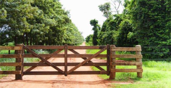 Venda de Imóvel Rural - Ganho de Capital - Como Calcular?