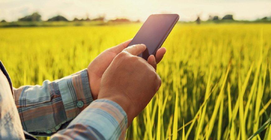 5 fatos sobre o Livro Caixa Digital do Produtor Rural (LCDPR) que impactam o negócio rural