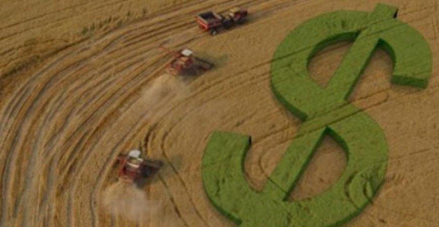 Prorrogação do Imposto de Renda: É hora de revisar a declaração da atividade rural