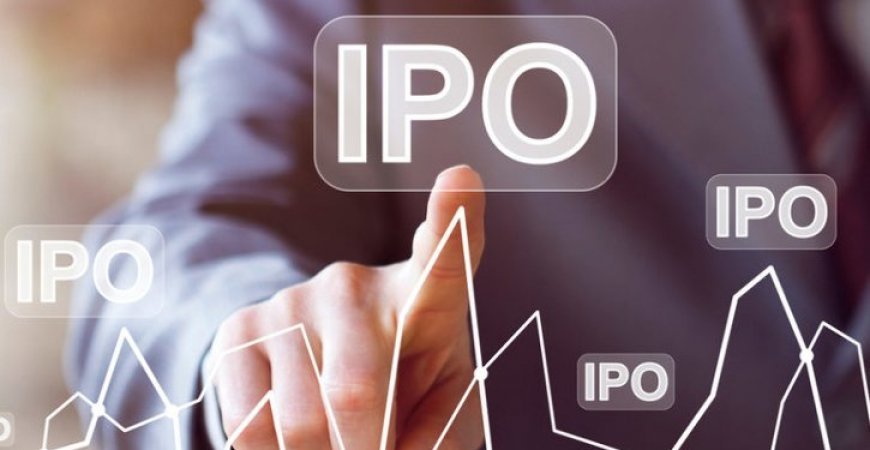 O que é e como funciona a Oferta Pública Inicial (IPO)