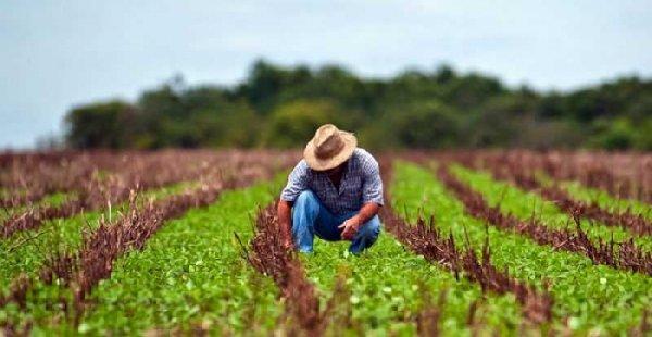PREVIDÊNCIA: Relator antecipa que BPC, aposentadoria rural e capitalização estarão fora da reforma