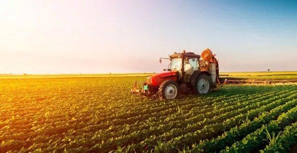 Governo autoriza refinanciamento de dívidas rurais