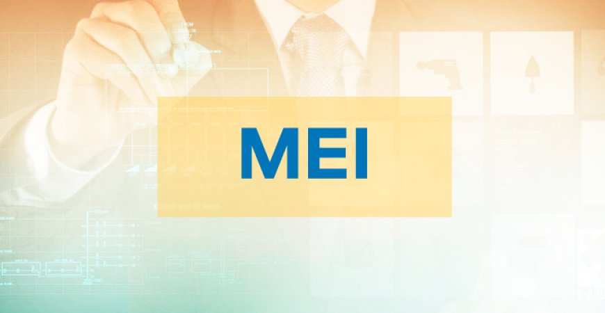 MEI: País ultrapassa a marca de 11 milhões de empreendedores